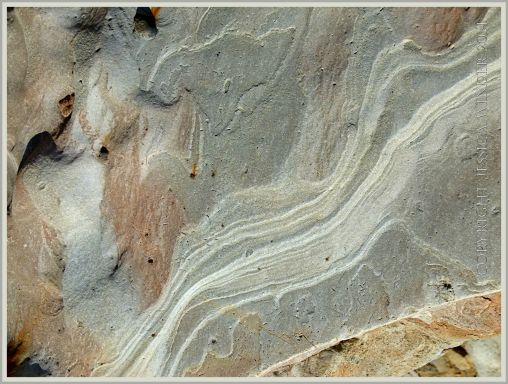 Pattern of weathered strata in grey rock in a beach boulder at Eype