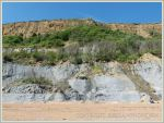 View of the cliff on the western shore at Eype showing stratification