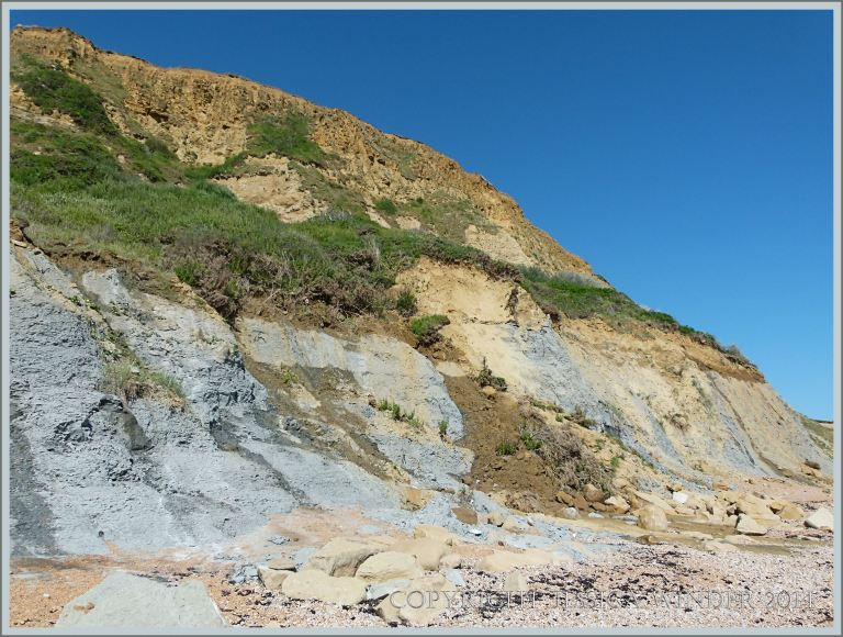 Blue-grey clay and yellow sandstone strata at Eype Beach