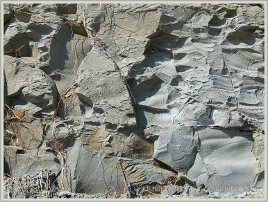 Natural pattern of breaks and fractures in the vertical cliff face of blue-grey Eype Clay Member
