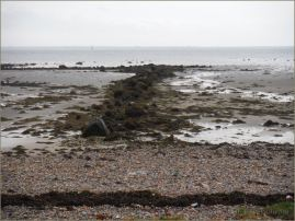 A wintry shore on Galway Bay
