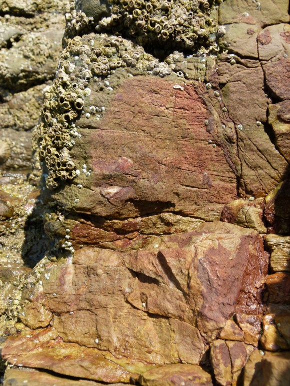 The rusty coloured patches of newly broken rock are due to iron minerals in the limestone