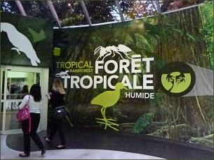 Entrance to the tropical forest section of the Biodome