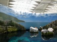 Recreation of rocky coast environment in the Biodome