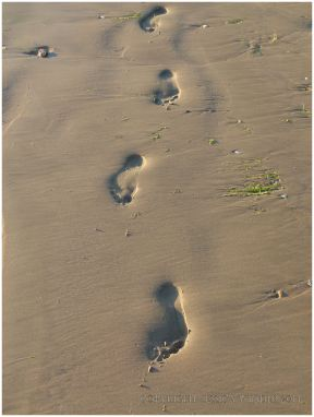 Footprints in the sand at Rhossili Beach