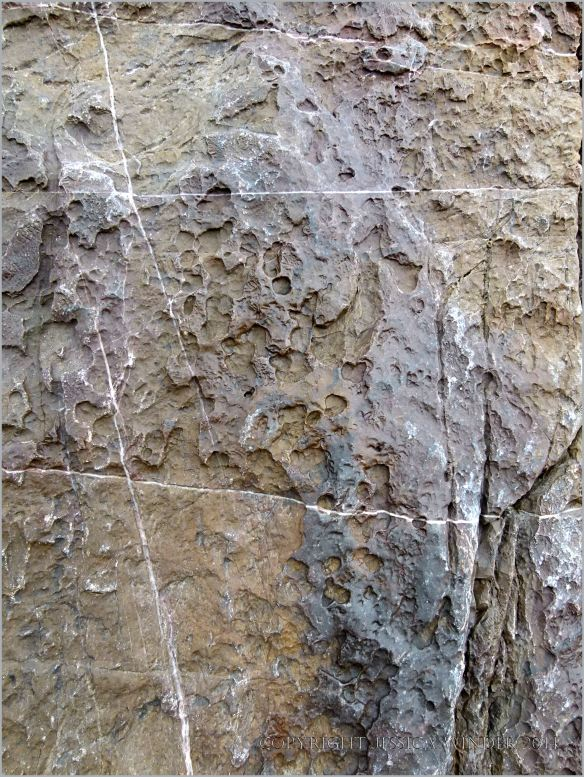 The effects of erosion on the surface of limestone in seashore cliffs