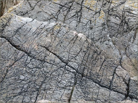 Odd pattern of cracks and grooves in limestone - resembling the tough wrinkled skin of elephant and rhinocerous hide