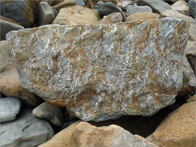 Natural patterns on a beach boulder