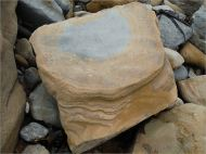 Sedimentary rock boulder on the seashore showing interior blue-grey colour that oxidises on exposure to air into yellow colour on the outer surface