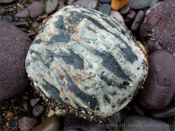 Beach stone with white quartz on the beach