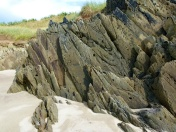 Jagged projections of Silurian rock on the beach