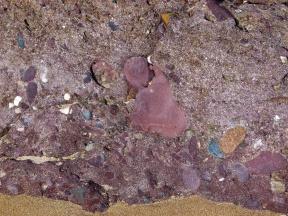 Devonian Dingle Group rock texture close-up