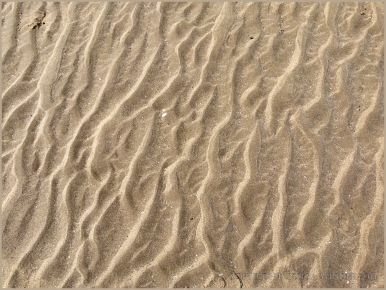 Natural sand ripple patterns on the beach