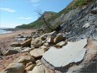 Sedimentary rock boulders on the seashore at the base of clay cliffs