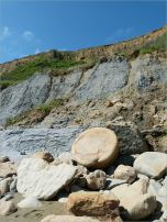 Sedimentary rock boulder on the seashore at the foot of clay cliffs