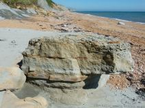 Stratified sedimentary rock boulder on the beach.
