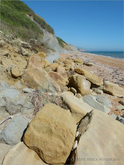 Sedimentary rock beach boulders at the base of clay cliffs.
