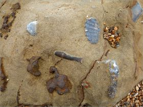Fossils and iron nodules in a rock on the beach at Eype in Dorset, England