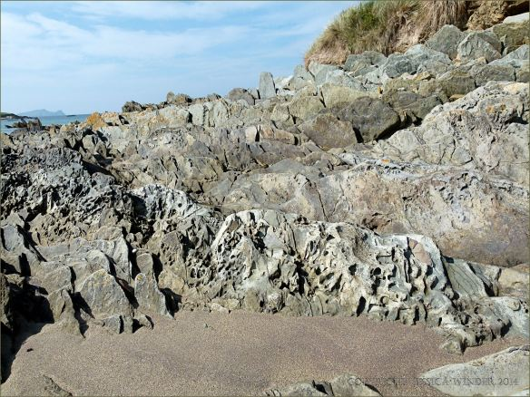 Silurian rocks with erosion sculpturing on the beach at Ferriters Cove