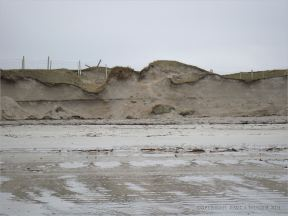Erosion of the sand dunes on the west side of the tombolo (spit) at Dogs Bay