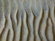 Sand ripples merging with tide pool