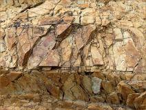 Silurian rocks at Ferriters Cove