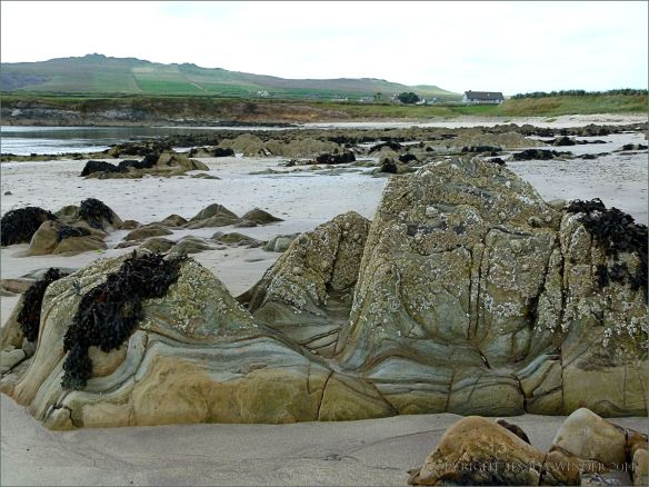 Silurian rocks on the beach at Ferriters Cove