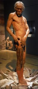 Model of an early example of Homo sapiens body