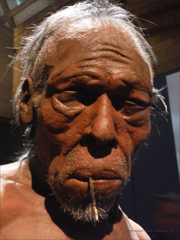 Model of an early example of Homo sapiens face