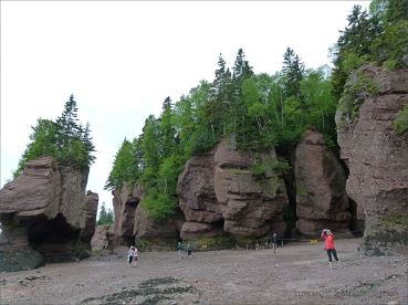 "View from beach level of red cliffs and ""flower pots"" at Hopewell Rocks in New Brunswick."