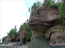 Tree-topped red cliffs and sea-stacks at Hopewell Rocks in New Brunswick, Canada.