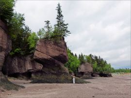"""Flower Pot"" sea-stack and cliff at Hopewell Rocks in New Brunswick"