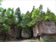 Cliff with vertical fissures and horizontal marine undercutting at Hopewell Rocks in New Brunswick.