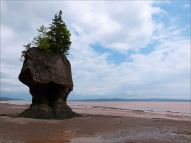 """Flower Pot"" sea-stack at Hopewell Rocks in New Brunswick, Canada."