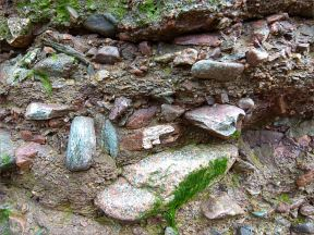 Detail of texture and composition in conglomerate from the Lower Carboniferous Hopewell Cape Formation