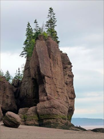 "Sea stack, known also as a ""Flower Pot"" at Hopewell Rocks in New Brunswick, Canada"