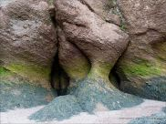 Natural sculpture in a weathered cliff face at Hopewell Rocks in New Brunswick