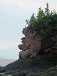 Face-like profile in the cliffs at Hopewell Rocks in New Brunswick