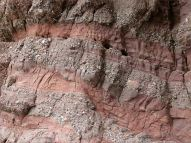 Detail of the oxidised redbeds of the Hopewell Cape Formation in New Brunswick