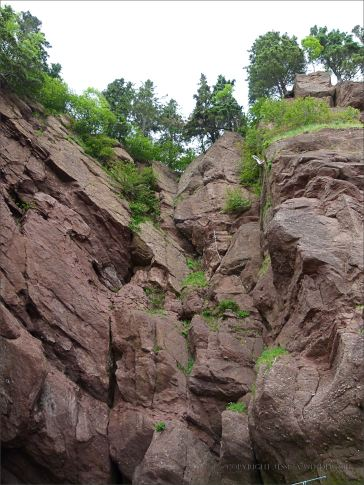 Red cliffs at Hopewell Rocks in New Brunswick