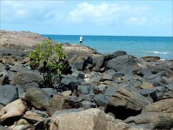 Boulders and bedrock near the Lookout at Four Mile Beach in Port Douglas