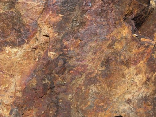 Weathered rusty rock close-up from the Lookout outcrop at Four Mile Beach in Port Douglas