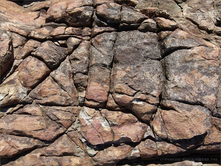 Fracture pattern in rusty rock by the Lookout outcrop near Four Mile Beach in Port Douglas