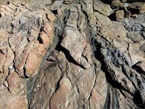 Narrow bands of dark rock running through a lighter rock near Four Mile Beach in Port Douglas