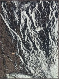 Abstract natural patterns of coral sand and plant debris on the drift line at Cape Tribulation beach