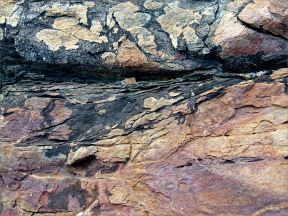 Colour and texture in a rock outcrop near Four Mile Beach in Port Douglas