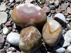 Pebbles on the beach at St Martins in New Brunswick
