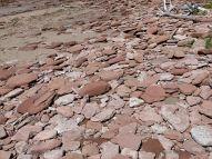 Red Triassic rocks on Waterside Beach in New Brunswick
