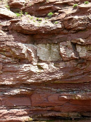 Vertical cross-section through red Triassic rock strata in the cliff at Waterside, New Brunswick.