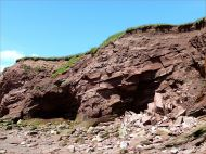 Shallow caves undercut by waves in cliff at Waterside in New Brunswick